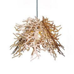 Abstraction Pendant Light (organic/branches) // Natural  By Brandon Perhacs