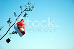 Kiwiana Christmas Themed Image royalty-free stock photo