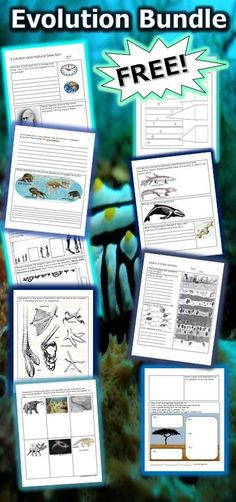 This is a free 20 page homework or classwork bundle includes short answers, fill in the blanks, complete diagrams, crossword puzzles, and much more. Topics addressed are Evolution, Mechanisms of Natural Selection, Life Origins, Human Evolution, Earth System History, and Ecological Succession. -Enjoy! Science from Murf LLC