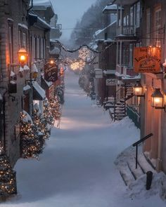 Winter Szenen, Winter Magic, Winter Time, Winter Christmas, Canada Christmas, Christmas Travel, Christmas Treats, Merry Christmas, Christmas Decorations