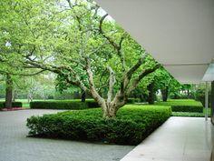 Miller House landscape