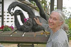 Cryptomundo » Update: Jane Goodall Talks Anew About Bigfoot