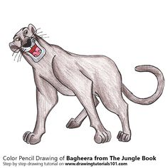 Bagheera from The Jungle Book with Color Pencils