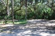 This is a picture of campsite 29 looking from the road into the partly sunny site.  This site has 50amp service and water hookups. Myakka River SP