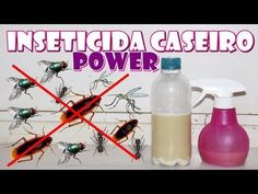 Cleaning Hacks, Cleaning Supplies, Spray Bottle, Personal Care, Simple, Diy, Dengue, Youtube, Ant Remedies