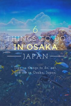 There are so many things that you could do in Osaka. Visit the aquarium, hop on a ferris wheel, eat some delicious sushi... The options are endless.