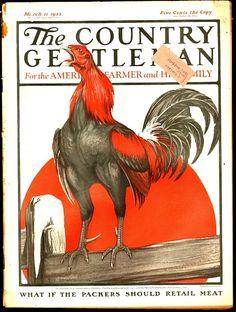Country Gentleman  -  Mar 11 1922