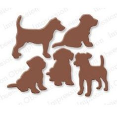 Impression Obsession Chiots
