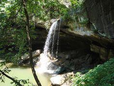 Top 8 Hiking Trails in Louisiana. #1 Tunica Hills / Clark's Creek, near St. Francisville, LA