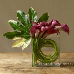 zen | surroundingsflowers.com