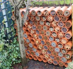 20 Recycled Gardening Ideas Spring decor is endless and simple to personalize. Such a decoration provides the outhouse an authentic appearance. Bug Hotel, Mason Bees, Garden Insects, Save The Bees, Garden Projects, Garden Inspiration, Outdoor Gardens, Front Gardens, Small Gardens