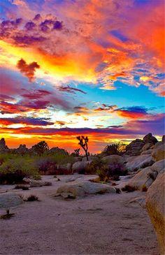National Park, Californie