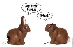 In honor of easter....See this every year but it still makes me smile.