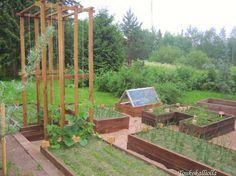 Toukokalliolla: Kasvun ihmeitä kasvimaalla Food Garden, Plants, Garden