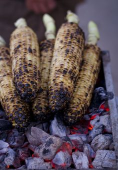 Persian-style roasted corn. absolutely delish. then you dip it in saltwater and let it set for a bit enough to soak in a big of it and cool down some. then... ENJOY