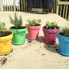 Potted herb garden in personalized pots