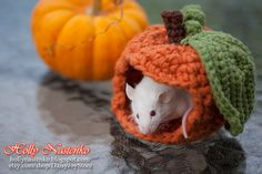 Unique Small Pet Crochet Pumpkin House by DaisyJoyStore on Etsy