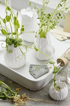 Pour créer votre petit potager, misez sur le DIY ! Glass Vase, Garden, Crafts, Pottery Ideas, Decor, Pots, Craft Ideas, Instagram, Plant Cuttings