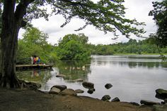bolam lakes - Google Search