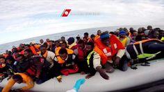Illegale vluchtelingen worden aangehouden