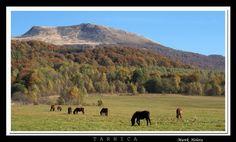 Tarnica Mountain - Poland