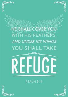 Psalm 91:4 Aww...