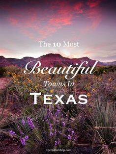 Thinking of Texas names for baby girls. Texas, the second-largest state in America, is home to a vast majority of charming towns, exciting cities and beautiful landscapes. Find out which towns made the list on The Culture Trip! Texas Vacations, Texas Roadtrip, Texas Travel, Travel Usa, Family Vacations, Family Travel, Texas Tourism, Texas Getaways, Travel Logo