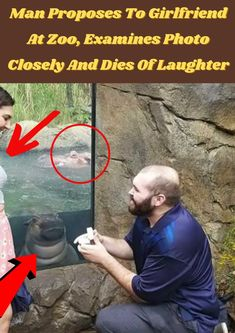 #Man #Proposes #Girlfriend #Zoo #Examines #Photo #Closely #Dies #Laughter Cute Fall Outfits, Outfits With Hats, Summer Business Outfits, Seashore Decor, Best Beard Styles, Hair Color Streaks, Hair Up Styles, Stylist Tattoos, Glam Makeup Look