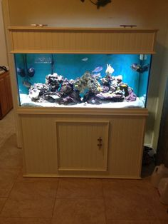 Hereu0027s a picture of my 90 gallon! Built the stand and canopy myself. - & My 150 Gallon Reef - Sam Bonahoom | #FishTankers | Pinterest ...