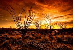 Arizona Highways Online Extras   Arizona Highways Magazine ...