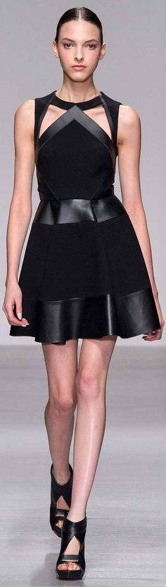 David Koma Fall 2014 Ready-to-Wear