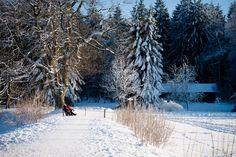 winter-wonderland - leiflight- Fotografie @ life