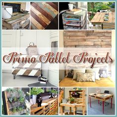 Primo Pallet Projects