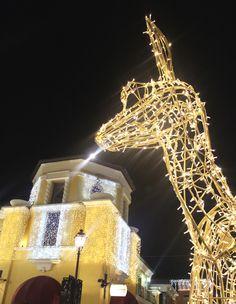#lights  #christmas #visual #decoration #lifestyle #magic #deer