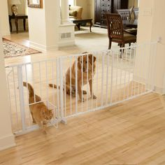 This Carlson Super Wide Maxi Gate is ideal for openings spanning 37-60 inches. This pet gate features safety lock handle, a small pet door, and is constructed of a sturdy, chew proof all-steel construction.