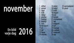 EnBildVarjeDag2016_Teman_M-11