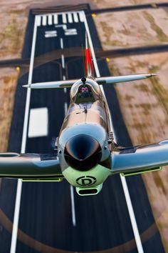 // Spitfire