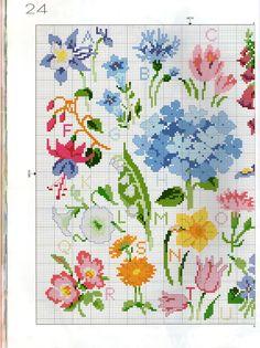 Abc flores 1