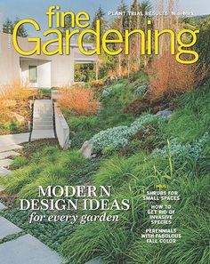 Guide to Growing Brunnera - FineGardening Pruning Hydrangeas, Hydrangea Bush, Flowers Perennials, Bamboo Trellis, Garden Trellis, Shade Garden, Lush Garden, Wooded Landscaping, Cold Frame