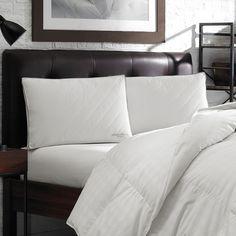 Eddie Bauer Quilted Hypoallergenic Sized Pillow