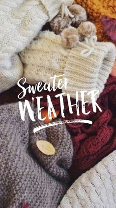 I love sweater weather! Fall Wallpaper, Christmas Wallpaper, Wallpaper Ideas, November Wallpaper, Halloween Wallpaper, Screen Wallpaper, Wallpaper Quotes, Autumn Aesthetic, Christmas Aesthetic