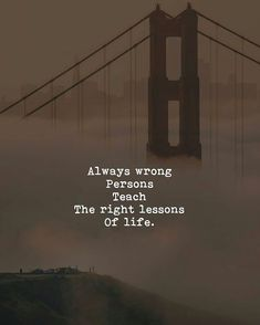 Always wrong persons teach the right Lessons of life. To know more visit my Blog.. Zindagi #zindagi #shayari #sad #zindgi #jindagi #lifequotes #true #factoflife