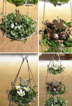 Adorable dish gardens