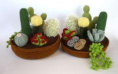 crochet cactus by josefa