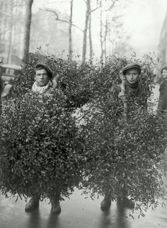 1928 Paris, selling mistletoe on the streets. 13 Magical Vintage Photos of Paris at Christmastime Vintage Pictures, Old Pictures, Vintage Images, Old Photos, Old Paris, Vintage Paris, Paris 1920s, Vintage Christmas Photos, Foto Poster