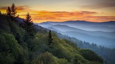 smoky mtn national park | Great Smoky Mountains National Park | Nature Photography