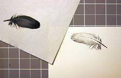 DIY: Feather Print