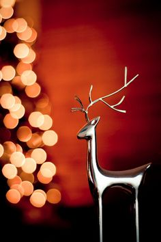 """""""The stockings were hung by the reindeer with care..."""""""