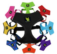 Classic Dog Harness Innovative Mesh No Pull No Choke Design Soft Double Padded Breathable Vest for Eco-Friendly Easy Control Walking Quick Release for Puppies Toy Breeds & Medium Dogs (Med, Blue) : Pet Supplies Dachshund Breed, Long Haired Dachshund, Dachshunds, Large Dogs, Small Dogs, Small Puppies, Small Small, Meds For Dogs, Yorky