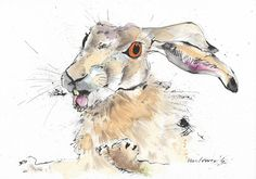 Hare - Escape, Original pen & ink drawing, watercolour painting - A4 suitable gift, watercolor, Hares, rabbit, bunny, rabbits, bunnies by TheArtfulSplodger on Etsy